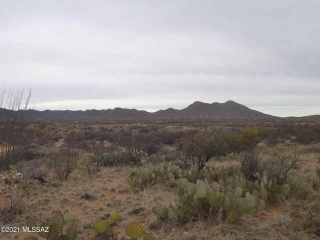 17000 Bloc S O J Ranch Road, Tucson, AZ 85736 (#22110006) :: Kino Abrams brokered by Tierra Antigua Realty