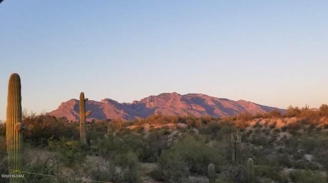 6050 N Mona Lisa Road, Tucson, AZ 85741 (#22110074) :: Long Realty - The Vallee Gold Team