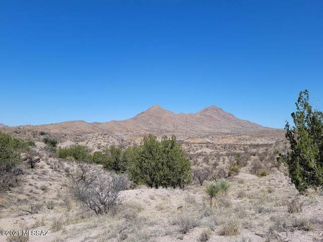 TBD Sonoita Creek Ranch #76, Rio Rico, AZ 85648 (#22110127) :: Long Realty Company
