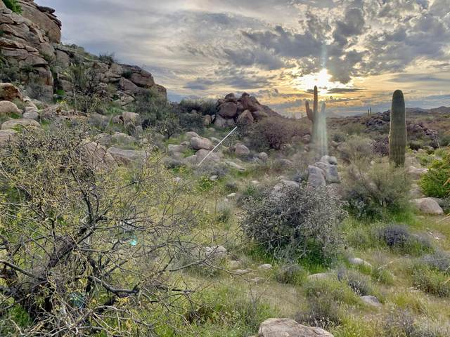 709 W Granite Gorge Drive W #331, Oro Valley, AZ 85755 (MLS #22110149) :: The Property Partners at eXp Realty