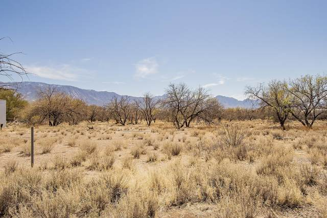 16490 N Forecastle Avenue, Tucson, AZ 85739 (MLS #22110160) :: The Property Partners at eXp Realty