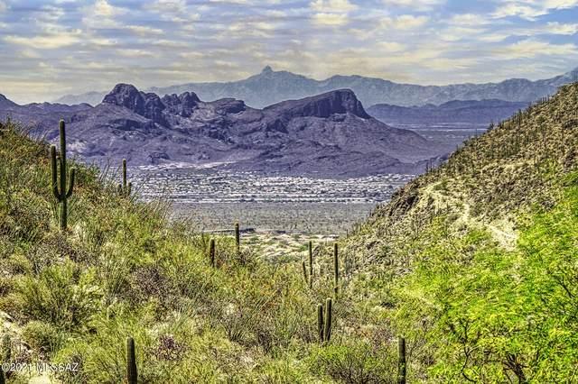 4405 W Cush Canyon Loop #85, Marana, AZ 85658 (#22110225) :: Kino Abrams brokered by Tierra Antigua Realty