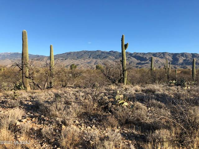 1974 N Wentworth Road, Tucson, AZ 85749 (#22110303) :: Long Realty - The Vallee Gold Team