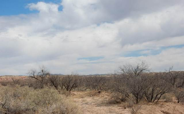 TBD 115 AC E Benson Airport Road, Benson, AZ 85602 (#22110380) :: Long Realty Company