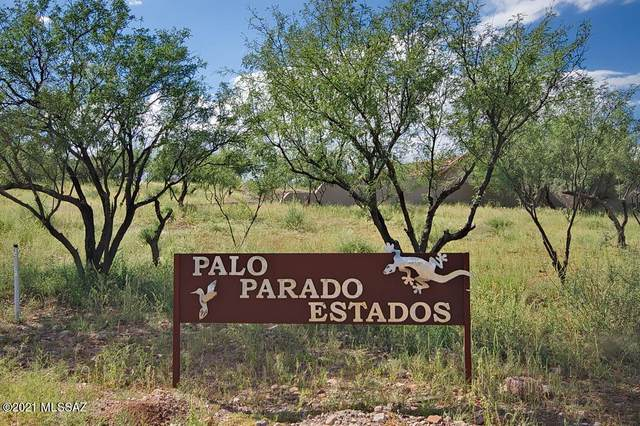 TBD Calle Palo Parado #47, Tubac, AZ 85646 (MLS #22110451) :: The Luna Team