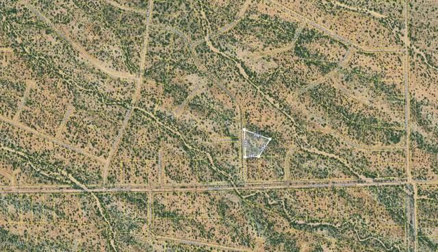 16046 W Powderhorn Drive W #279, Tucson, AZ 85736 (#22110647) :: The Local Real Estate Group | Realty Executives
