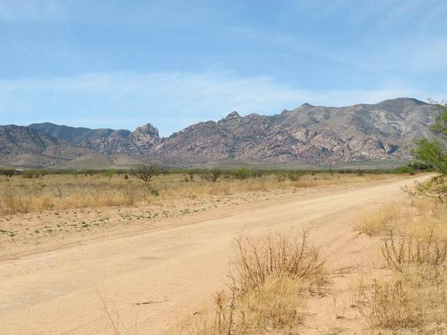 TBD W Allen Street #12, Pearce, AZ 85625 (MLS #22110701) :: The Property Partners at eXp Realty