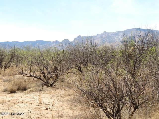 TBD W Cochise Way #2, Cochise, AZ 85606 (#22110705) :: Tucson Real Estate Group