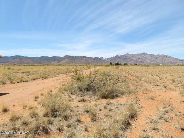 311 W March Road 8/9, Pearce, AZ 85625 (MLS #22110708) :: The Property Partners at eXp Realty