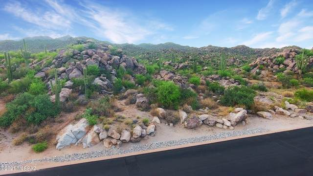 1481 W Tortolita Mountain Circle #281, Oro Valley, AZ 85755 (#22110765) :: Long Realty - The Vallee Gold Team