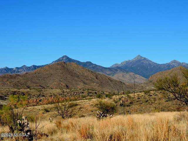 TBD Silver Mine Trail #56, Tubac, AZ 85646 (MLS #22110946) :: The Luna Team