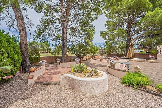 1057 N Paseo Iris, Green Valley, AZ 85614 (#22110966) :: Long Realty - The Vallee Gold Team