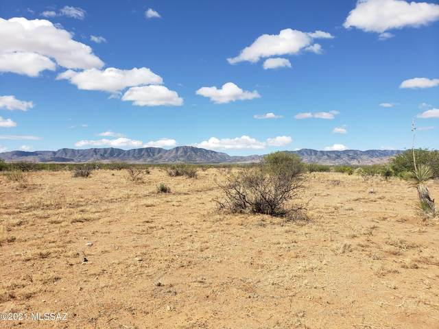 Lot 14-15 Towner Road #15, Pearce, AZ 85625 (MLS #22111015) :: The Property Partners at eXp Realty
