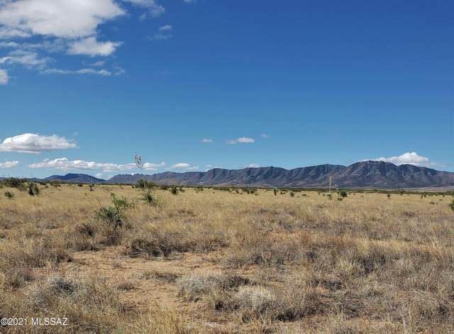 2 Lots Pine Street, Pearce, AZ 85625 (MLS #22111029) :: The Property Partners at eXp Realty