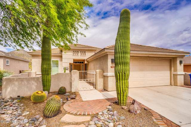 13650 N Holly Grape Drive, Marana, AZ 85658 (#22111218) :: Long Realty - The Vallee Gold Team