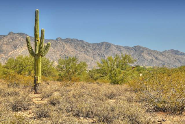 3356 E Camino Boscaje Escondido #260, Tucson, AZ 85718 (#22111381) :: Tucson Real Estate Group