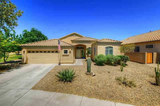 11436 W Pipestone Street, Marana, AZ 85658 (#22111395) :: Long Realty - The Vallee Gold Team