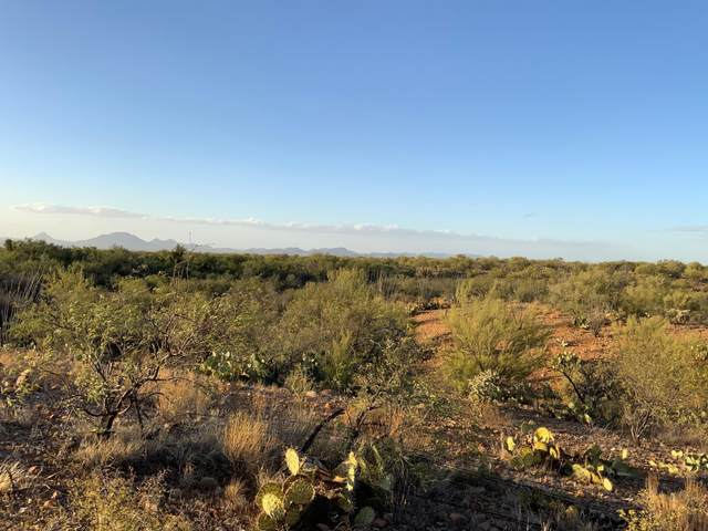 0000 010C No Situs Address, Tucson, AZ 85736 (#22111433) :: Long Realty - The Vallee Gold Team