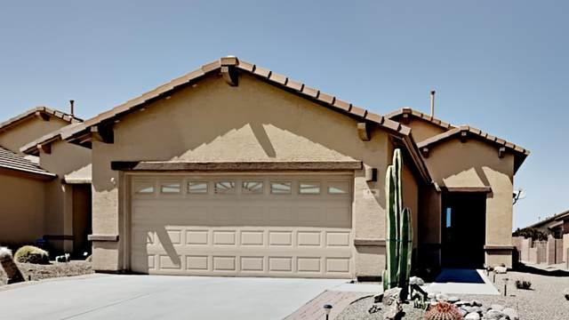 496 W Bazille Way, Green Valley, AZ 85614 (#22111451) :: Gateway Realty International