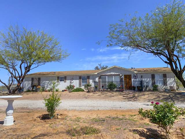 12002 N Derringer Road, Marana, AZ 85653 (#22111470) :: Long Realty - The Vallee Gold Team