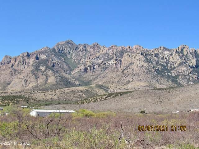 7.89 acres Portal Rd & Acacia Lane #47, Portal, AZ 85632 (#22111612) :: Long Realty - The Vallee Gold Team