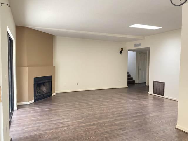 625 W Placita De Las Lomitas, Tucson, AZ 85704 (#22111615) :: Tucson Property Executives