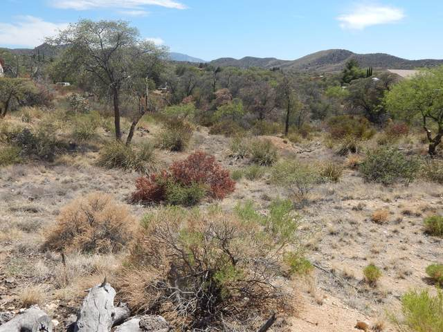 0 E Mt Lemmon Highway #0, Oracle, AZ 85623 (#22111617) :: Long Realty - The Vallee Gold Team