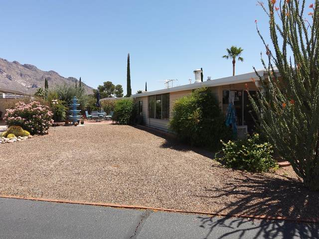 309 W Andes Street, Tucson, AZ 85737 (#22111625) :: Long Realty - The Vallee Gold Team