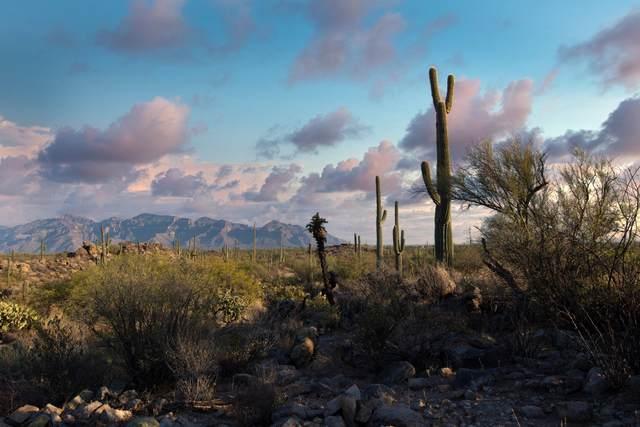 13602 N Old Ranch House Road, Marana, AZ 85658 (MLS #22111652) :: The Property Partners at eXp Realty