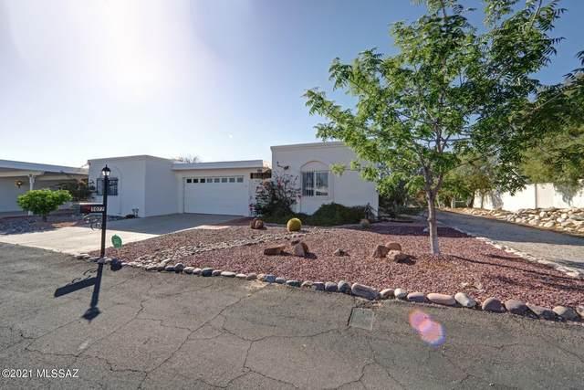 5077 N Campana Drive, Tucson, AZ 85718 (#22111796) :: Kino Abrams brokered by Tierra Antigua Realty