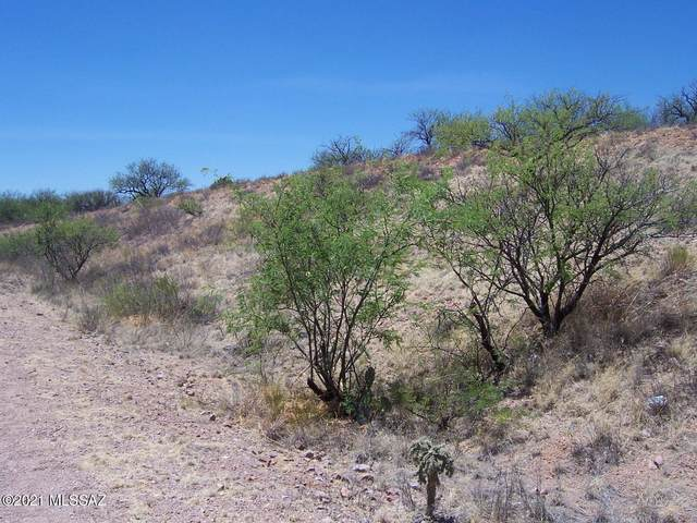 16700 W Arivaca Road #1, Arivaca, AZ 85601 (#22111820) :: The Dream Team AZ