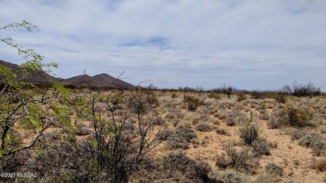 4 Acre On W Big Draw Road --, Cochise, AZ 85606 (#22111832) :: Tucson Property Executives