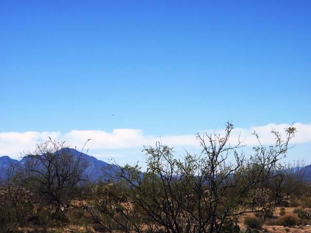 13050 S Happy Hollow Lane #114, Tucson, AZ 85736 (#22112016) :: Long Realty Company