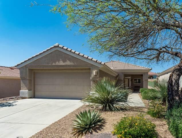 13655 N Gold Cholla Place, Marana, AZ 85658 (MLS #22112024) :: The Property Partners at eXp Realty