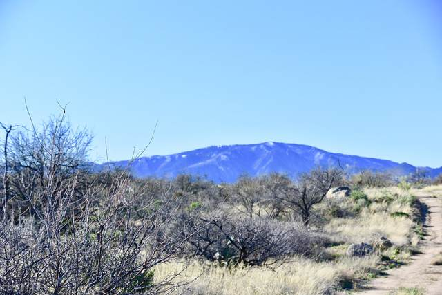 2.5 Acres W Linda Vista Rd, Oracle, AZ 85623 (#22112118) :: Kino Abrams brokered by Tierra Antigua Realty