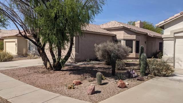 9284 N Scarlet Canyon Drive, Tucson, AZ 85743 (#22112132) :: Kino Abrams brokered by Tierra Antigua Realty