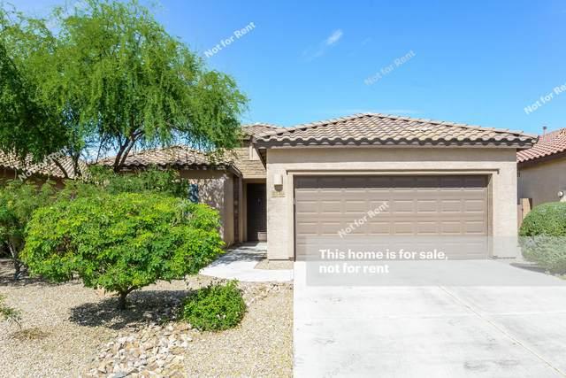 8140 N Circulo El Palmito, Tucson, AZ 85704 (#22112242) :: The Dream Team AZ