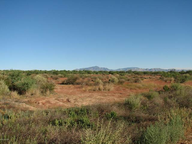 30 Acres N Hollyhock Way, Benson, AZ 85602 (#22112257) :: Tucson Real Estate Group