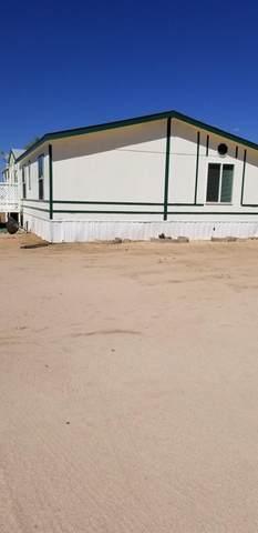 14420 W Dusty Desert Drive, Tucson, AZ 85736 (#22112306) :: Kino Abrams brokered by Tierra Antigua Realty