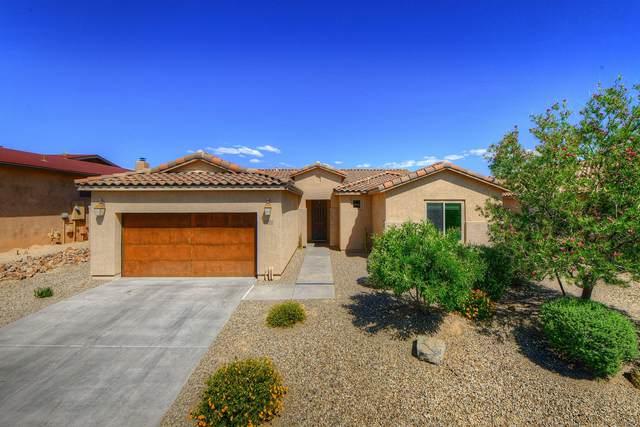 11588 N Adobe Village Place, Marana, AZ 85658 (#22112312) :: Tucson Real Estate Group