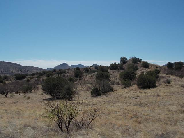 154 Tanglehead #44, Patagonia, AZ 85624 (#22112373) :: Tucson Real Estate Group