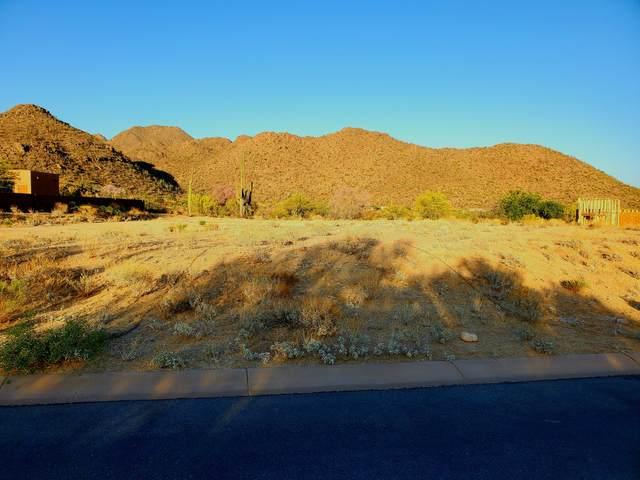6107 W Seven Saguaros Circle #55, Marana, AZ 85658 (#22112453) :: The Dream Team AZ