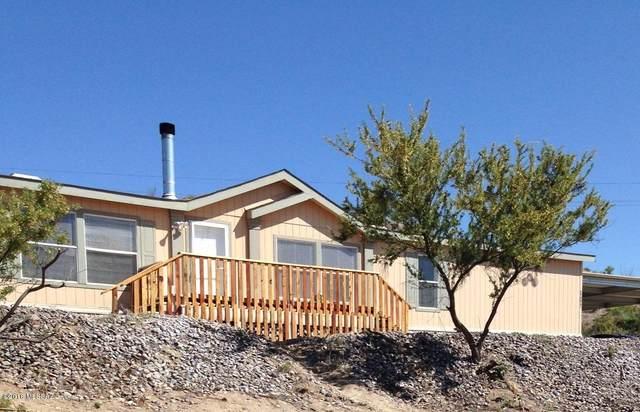 15146 N Ironwood Tree Road, Tucson, AZ 85739 (#22112494) :: Gateway Realty International