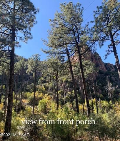 13187 E Turkey Creek Road, Pearce, AZ 85625 (MLS #22112717) :: The Luna Team