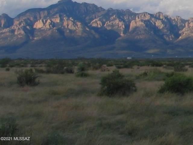 TBD W Cypress Ln Caballos Delas Estr #24, San Simon, AZ 85632 (#22113186) :: Long Realty - The Vallee Gold Team