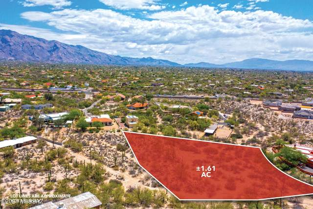 521 E Placita Cerro Amistoso #382, Tucson, AZ 85704 (#22113503) :: Tucson Property Executives