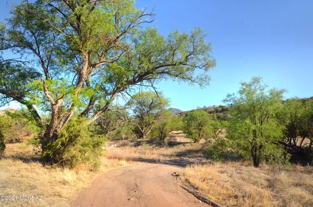 1B Stevens Canyon Road 1-B, Patagonia, AZ 85624 (#22113841) :: Keller Williams