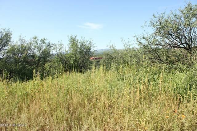 491 Camino Hombre De Oro #55, Rio Rico, AZ 85648 (#22113843) :: Tucson Real Estate Group