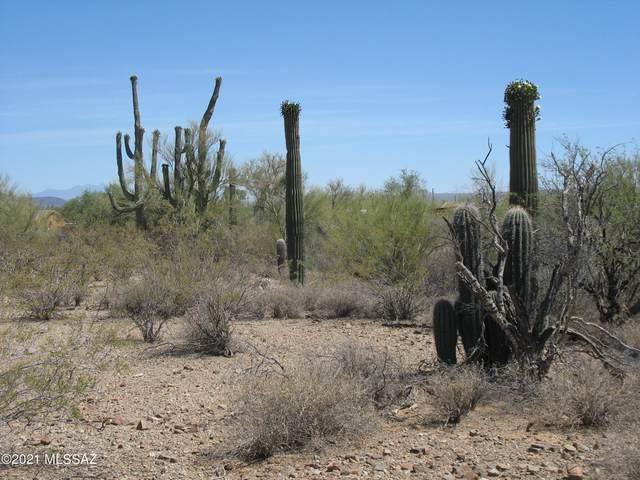 W Silver Flower Place, Tucson, AZ 85735 (#22113946) :: Kino Abrams brokered by Tierra Antigua Realty