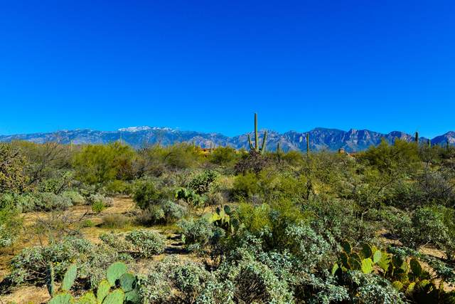 1828 W Mountain Mirage Place #154, Oro Valley, AZ 85755 (#22114288) :: The Local Real Estate Group | Realty Executives